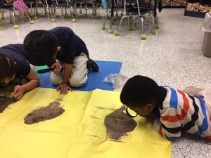 Edie Potts' Kindergarten class is learning about the physical attributes of soil. Each student brought in soil from their yards to examine.