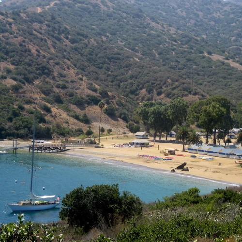 8th Graders Head to Catalina Island! Thumbnail Image