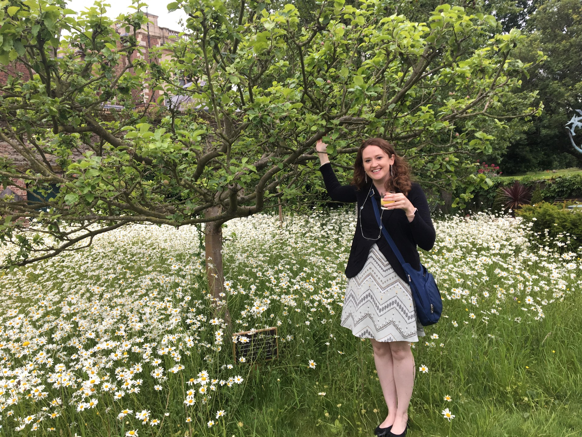 Enjoying some apple juice under a descendant of Issac Newton's tree.