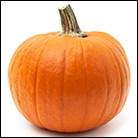 HOTM-pumpkin image.jpg