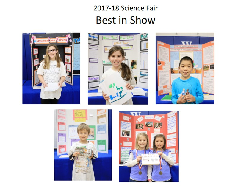 2017-2018 Lombard District 44 Science Fair Best in Show Winners Thumbnail Image