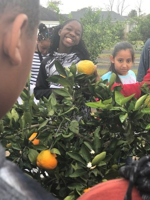 JL Lomax Students Picking Fruit
