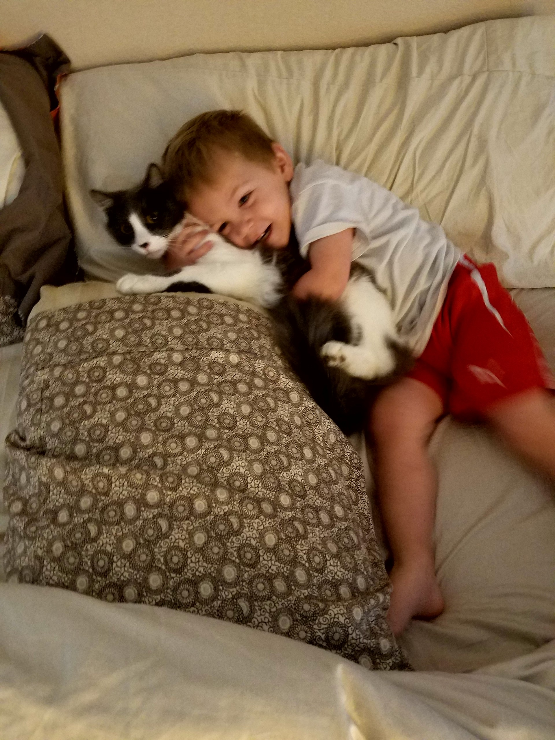 son and pet