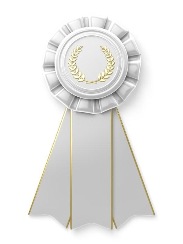 decorative item: ribbon