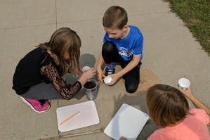 Students add soil to small cups where they will plant a sunflower seed.