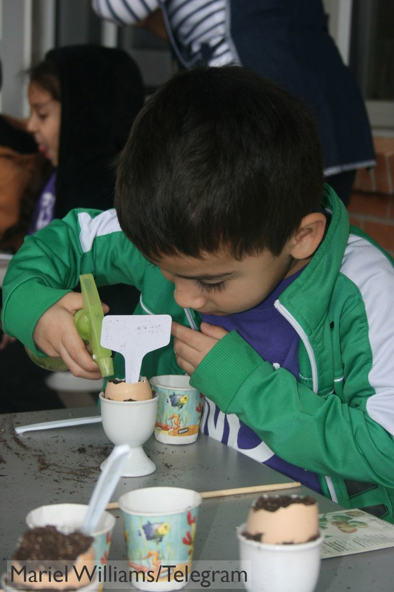 Students Planting in Egg Shells