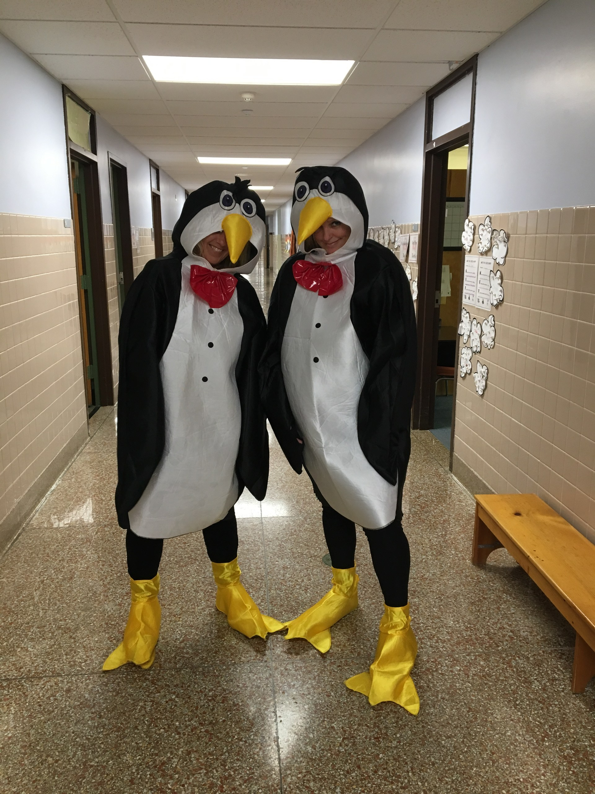 teachers dress as penquins