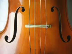 CelloCloseup3.jpg