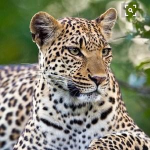 Juanita Pacheco-Ramon's Profile Photo