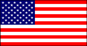 911 flag.png