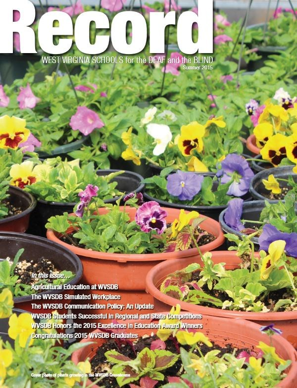 cover of summer 2015 Record showing potted pansies