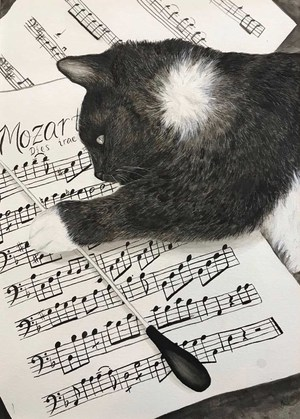 Cat laying on sheet of music