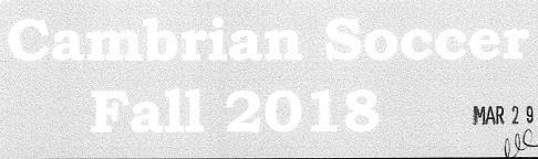 Cambrian Soccer Fall 2018 Headline