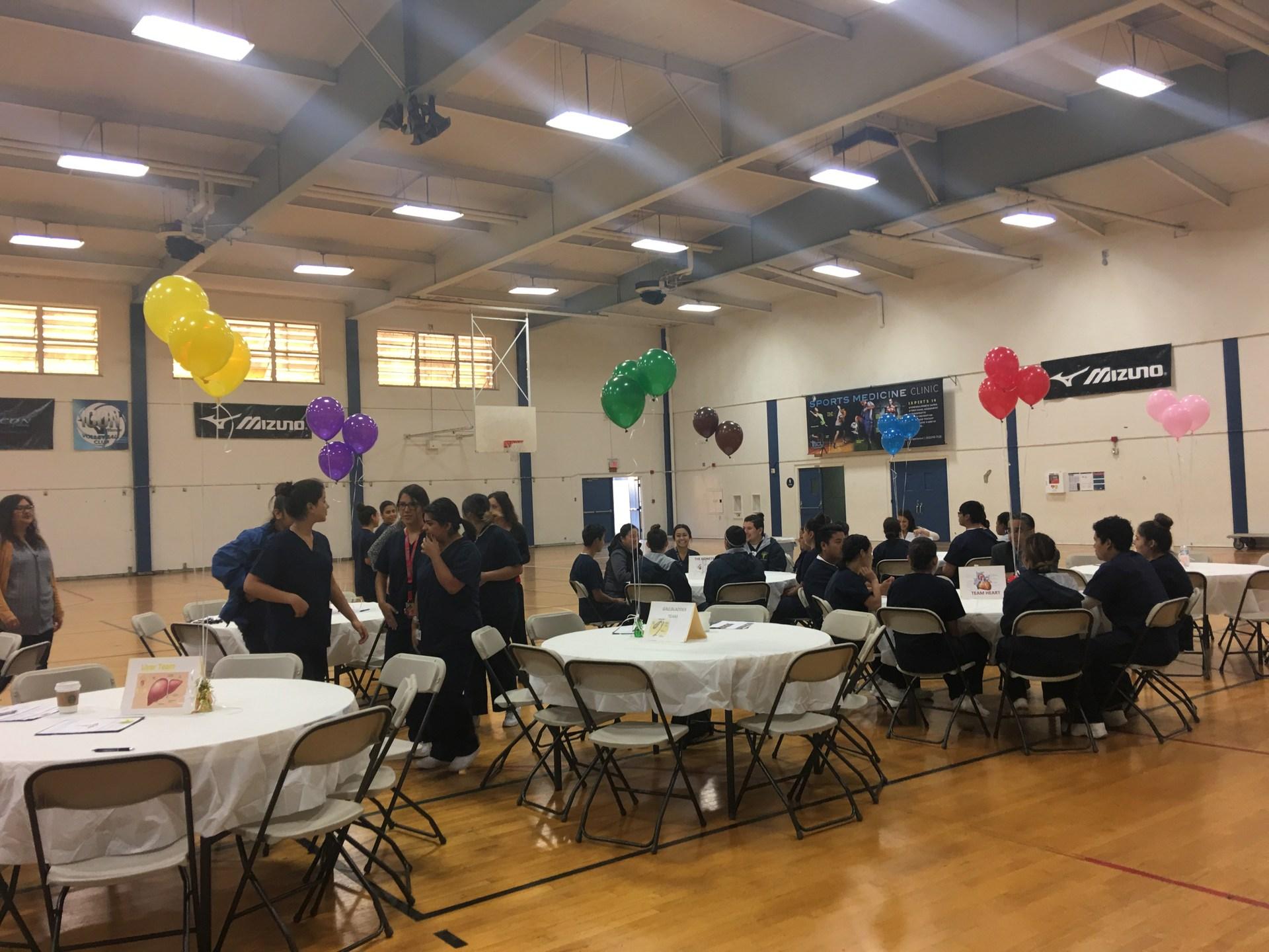 Mentor Program Meet and Greet
