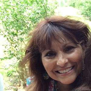 Beverly Chapman's Profile Photo