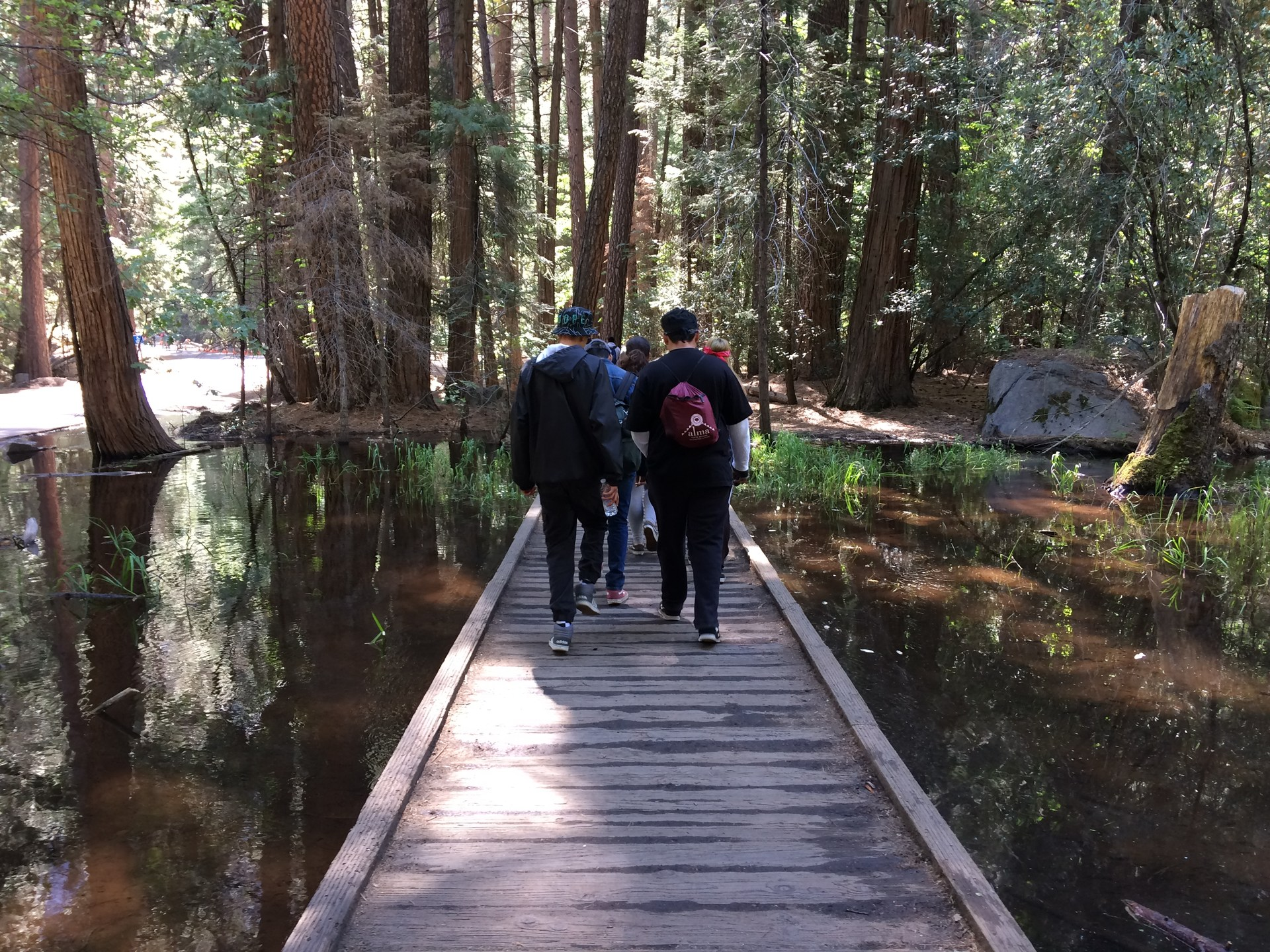 students walk over a bridge through the woods