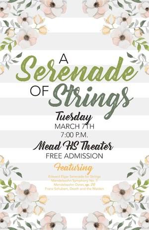 Serenade of Strings.jpg