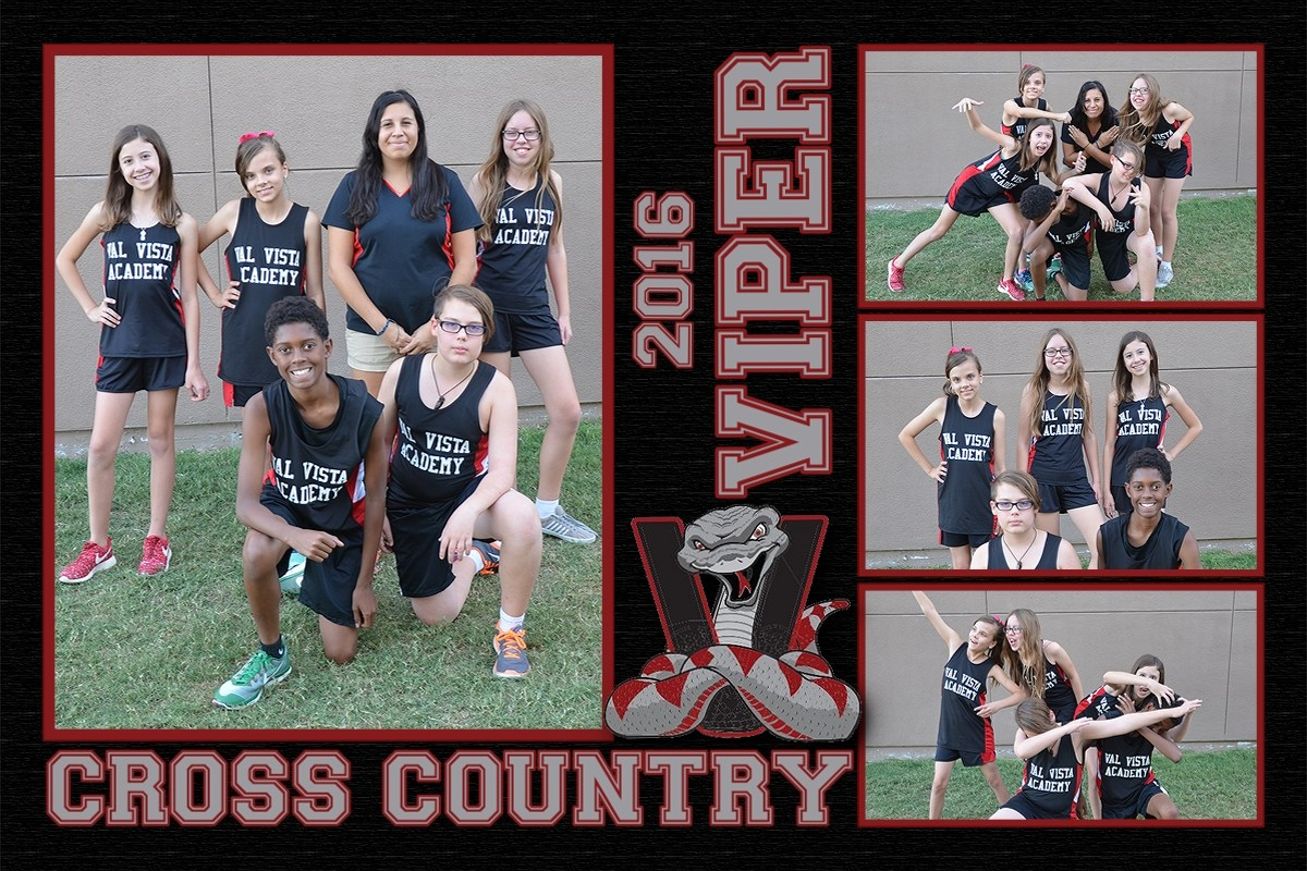 2016 Vipers Cross Country