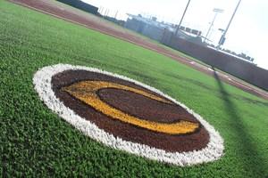 picture, new softball complex