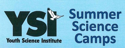 YSI Summer Camps Logo
