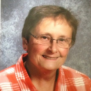 Laurie Mattila's Profile Photo