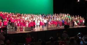 DTSD Primary School Winter Concert 2.jpg