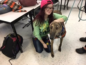 MLHS Student Amanda Miller and Jerry the rescue greyhound trying on his new dog coat.