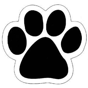 wildcat paw.jpeg