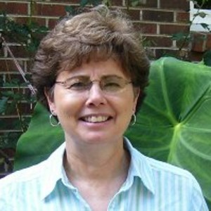 Sylvia DiLorenzo's Profile Photo