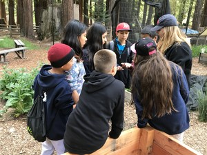 a group of students learns about nature, image 1