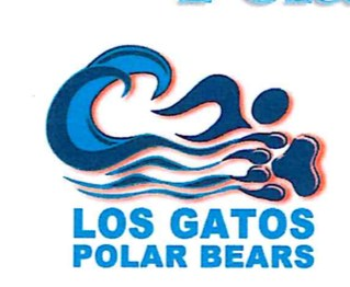 los gatos polar bears