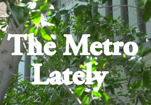 metro lately image.jpg