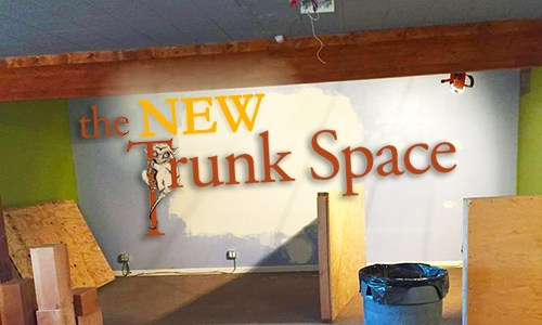 trunk space image