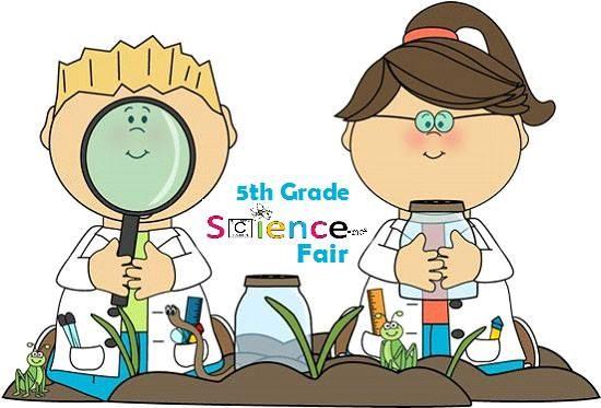 Science Fair This Friday! Thumbnail Image
