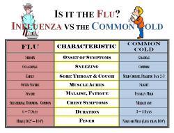 cold flu chart.jpg
