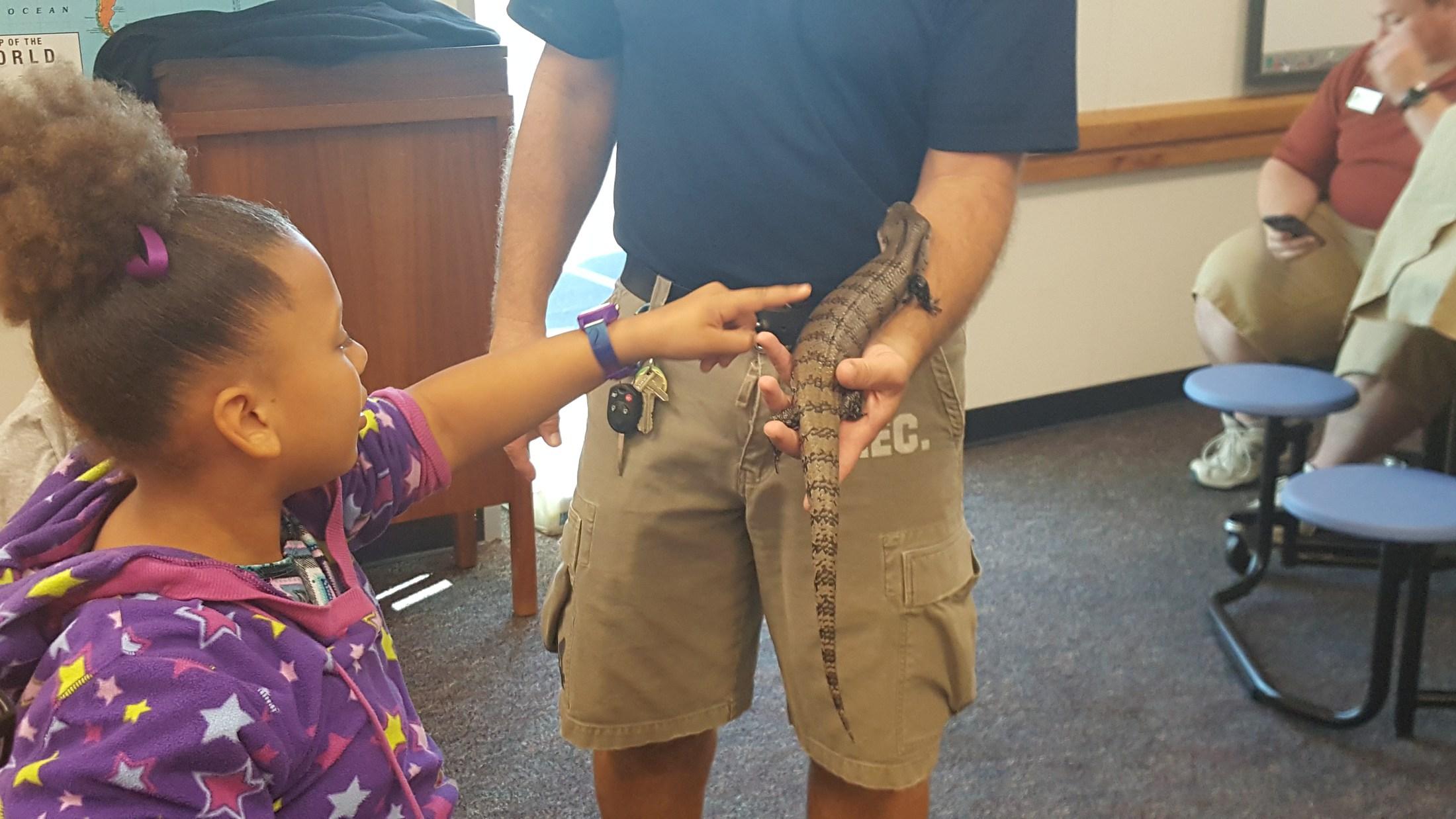 Girl touching lizard