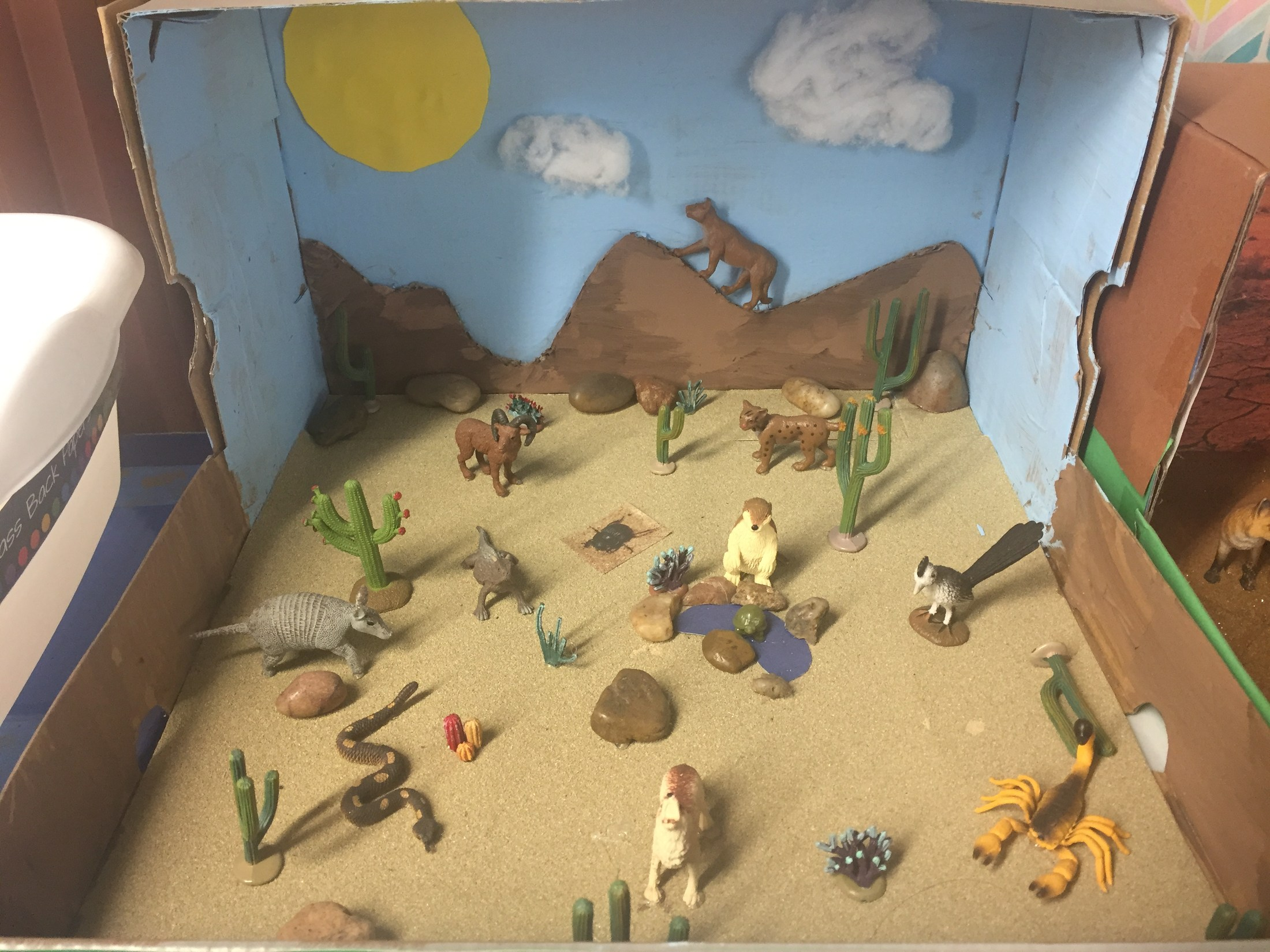 Ecosystem Diorama – Mrs  Michelle Turner – Olive Drive Elementary School