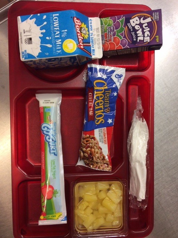 cereal bar and gogurt