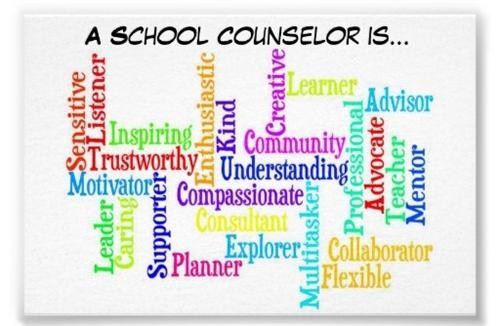 A school counselor is....