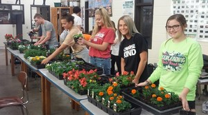 BHS students working on plants in greenhouse