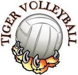 tiger volleyball logo
