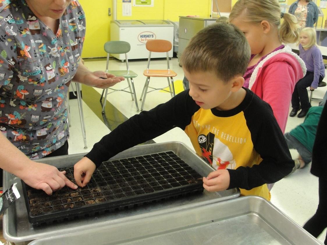 Student planting seeds
