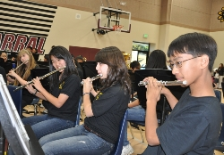 wind ensemble flutes 1.JPG