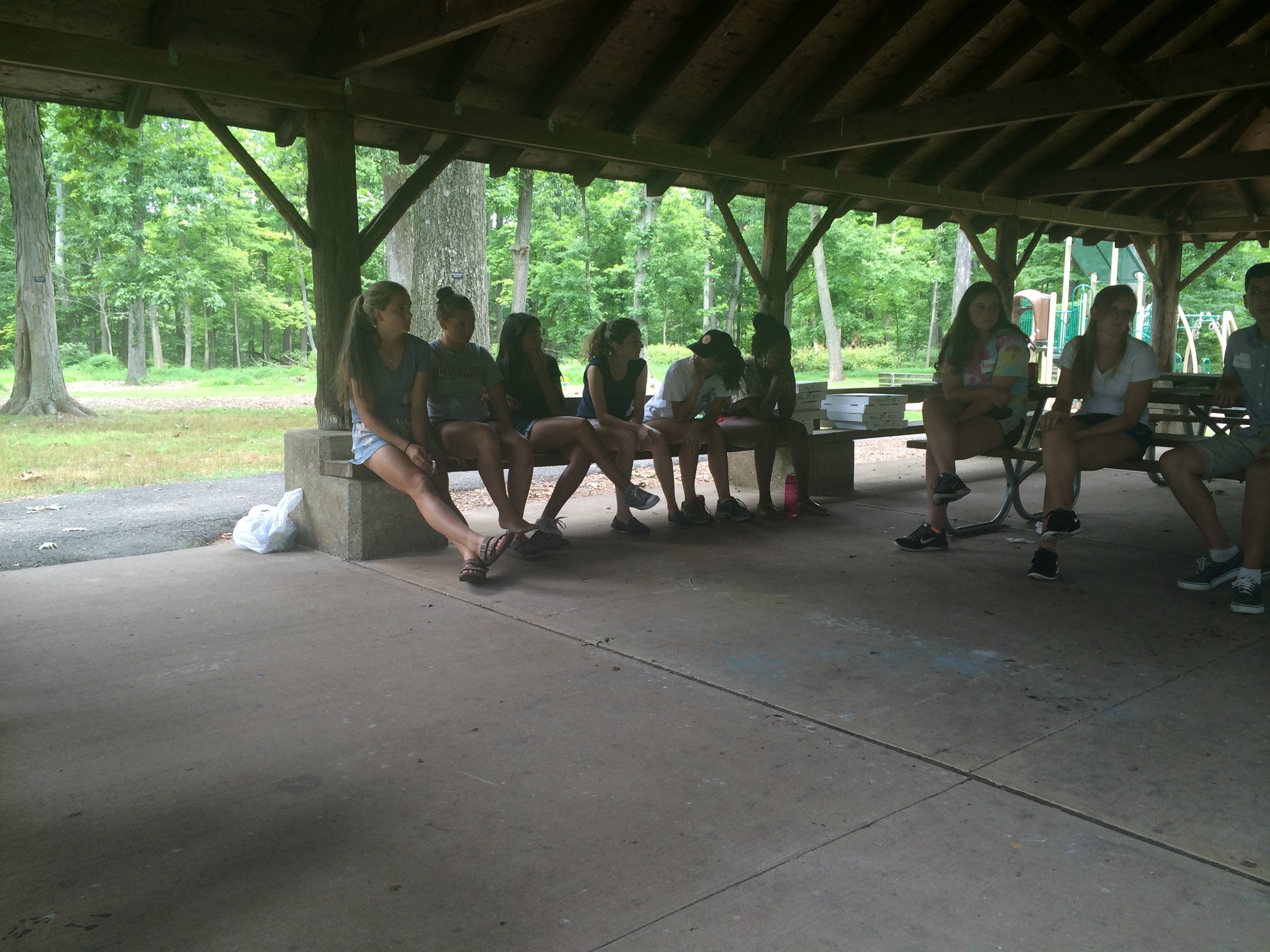 Council members gather at a picnic shelter