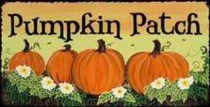 The Pumpkin Patch.jpg