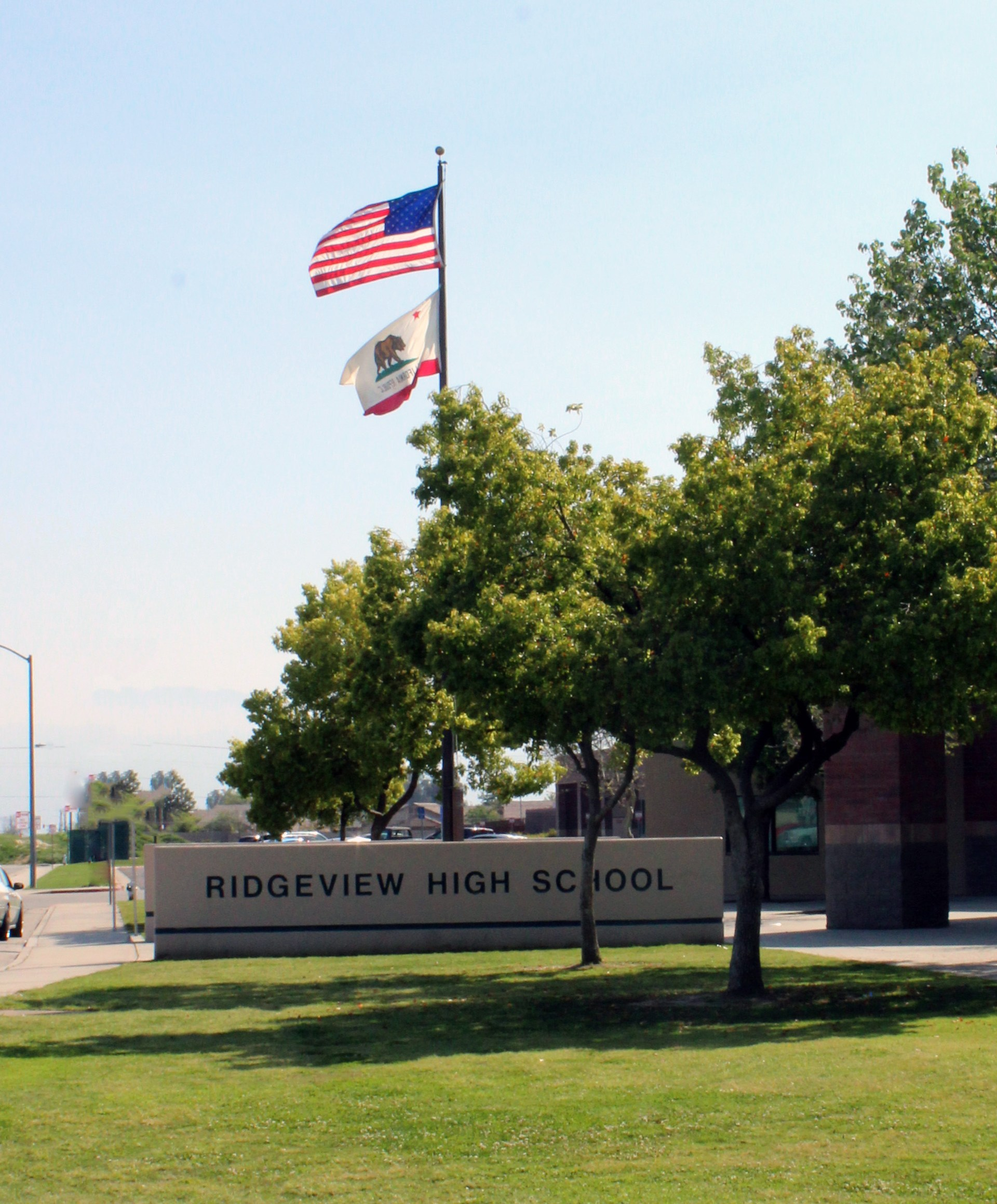 Flag in Front of School