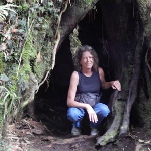 Pam Miller's Profile Photo