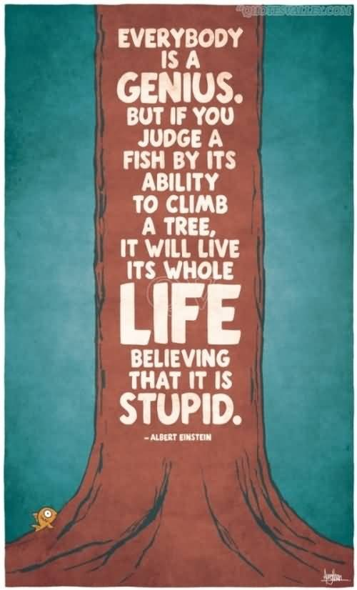 If you judge a fish...