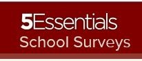 5Essential Survey Featured Photo