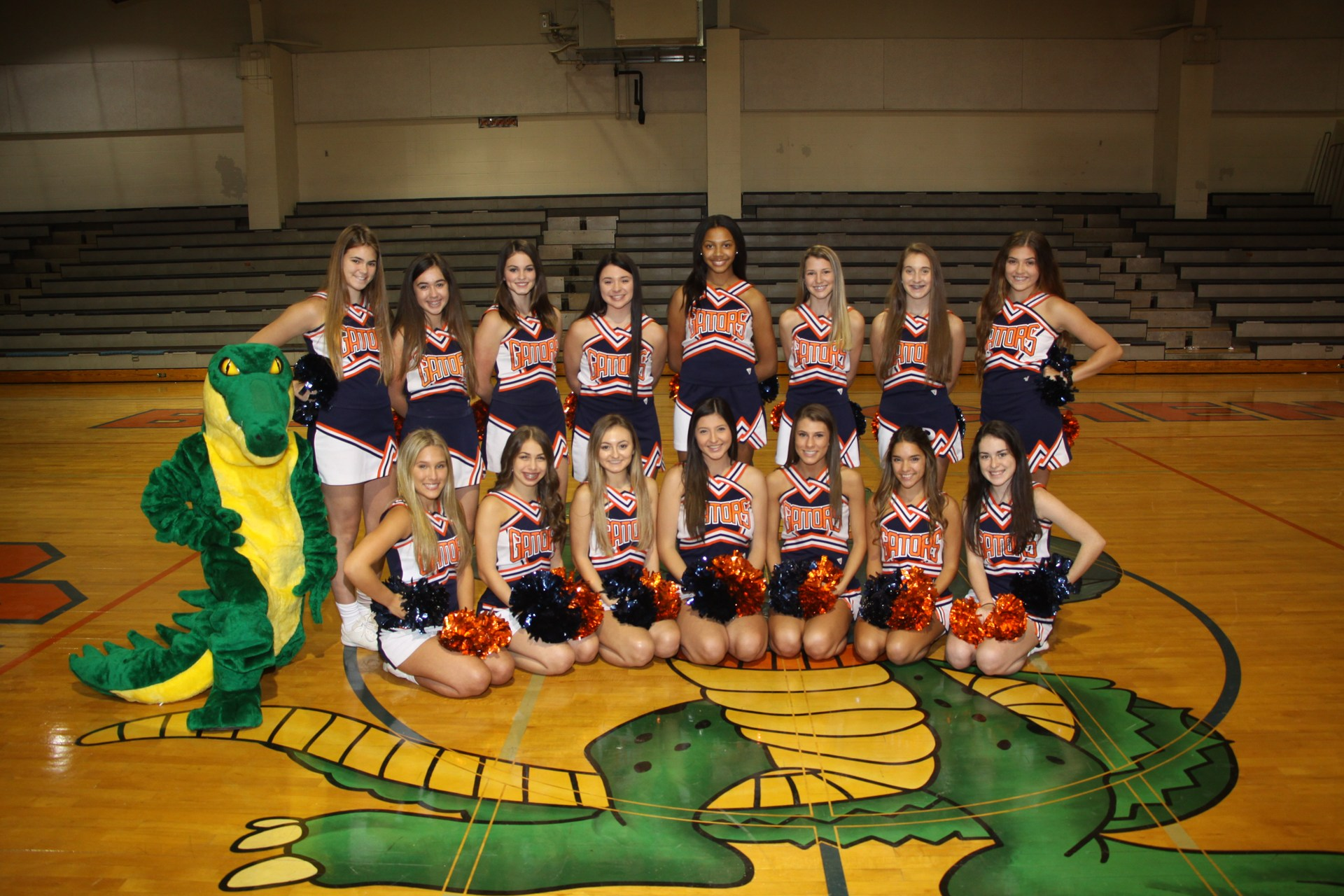 BCHS Cheerleaders ~ 2017-2018